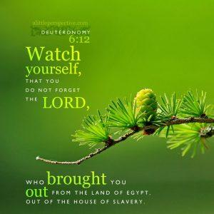 Deu 6:12 | scripture pictures at alittleperspective.com