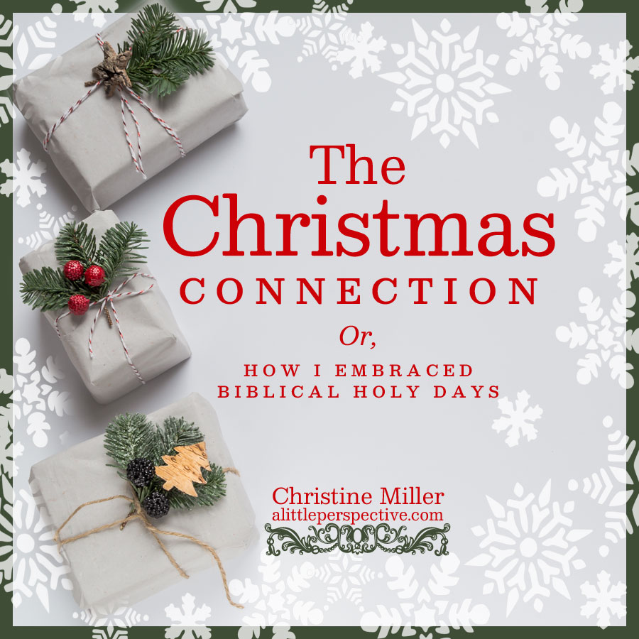 the christmas connection | alittleperspective.com