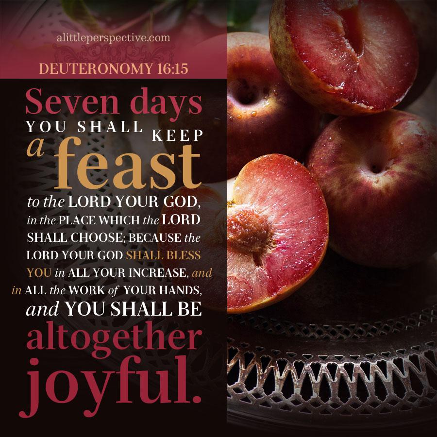 Deu 16:15 | scripture pictures at alittleperspective.com