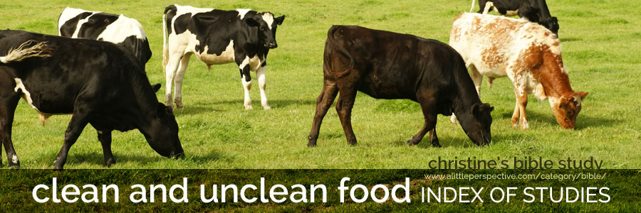 clean and unclean food index of studies | christine's bible study at a little perspective