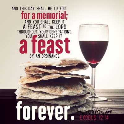 our favorite wine for sabbath & feast days