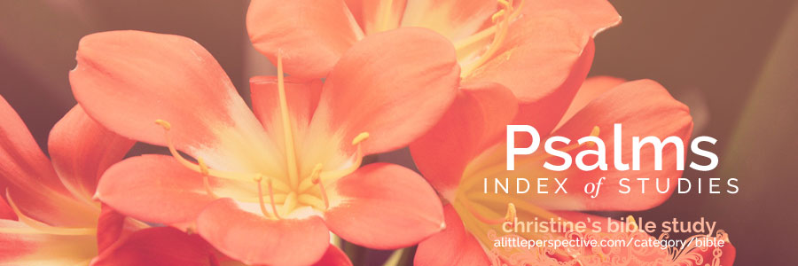 psalms index of studies | christine's bible study at alittleperspective.com