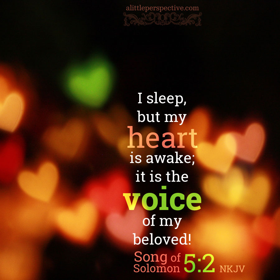 song of solomon 5 and 6