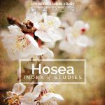 hosea index of studies