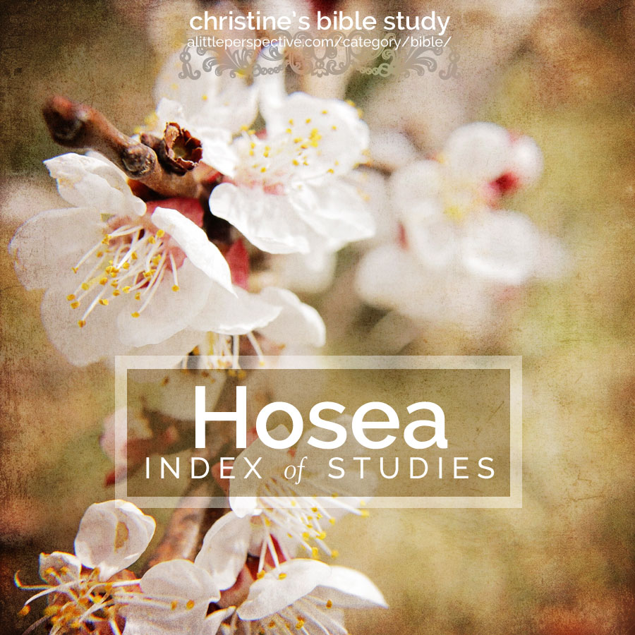 hosea index of studies | christine's bible study at alittleperspective.com