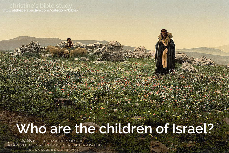 who are the children of israel? | christine's bible study at a little perspective