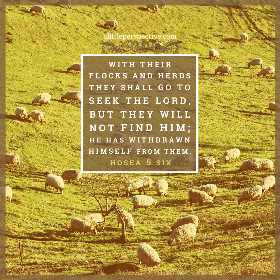 Hos 5:6 | scripture pictures at alittleperspective.com