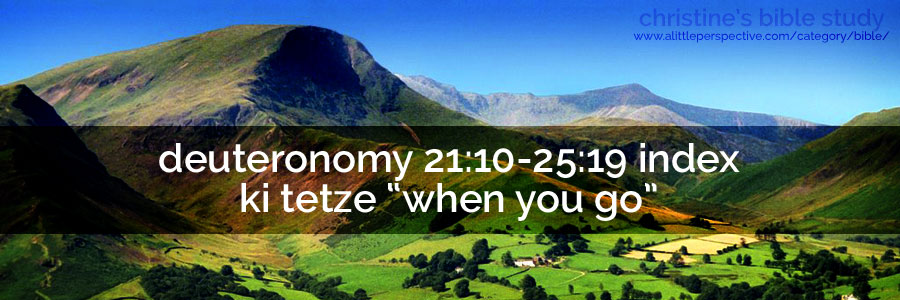 "deuteronomy 21:10-25:19 index, ki tetze ""when you go"""