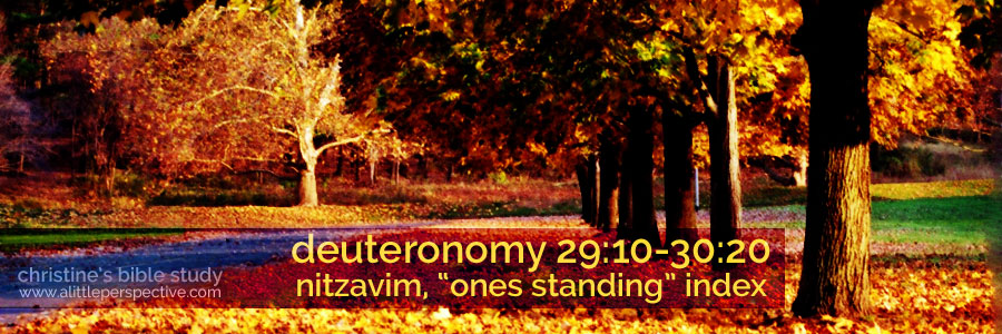 "deuteronomy 29:10-30:3, nitzavim ""ones standing"" index 