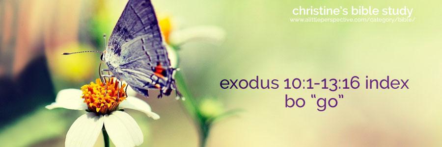 """exodus 10:1-13:16 bo """"go"""" index"""
