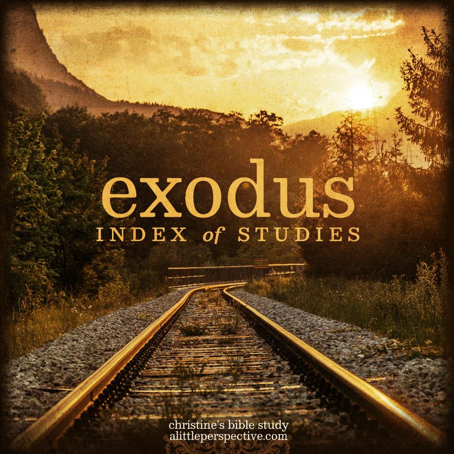 exodus index of studies