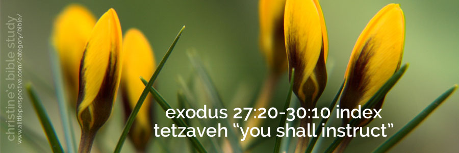 "exodus 27:20-30:10 index tetzaveh ""you shall instruct"""