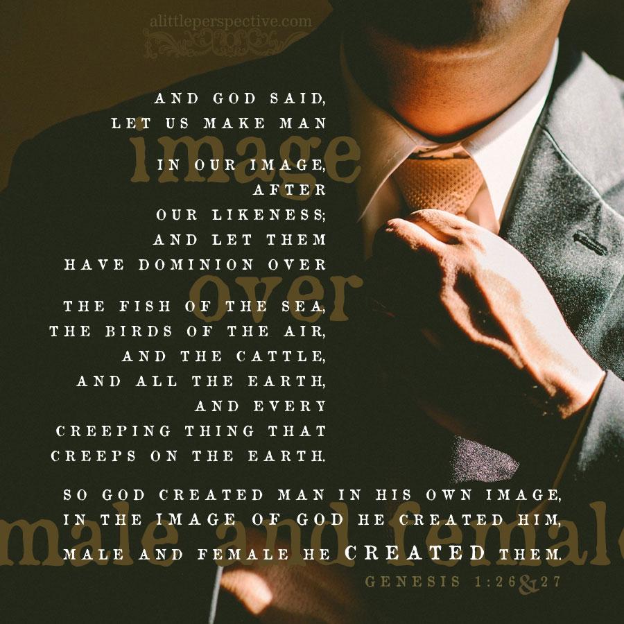 Gen 1:26-27 | scripture pictures at alittleperspective.com