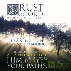 Pro 3:5-6 | scripture pictures at alittleperspective.com