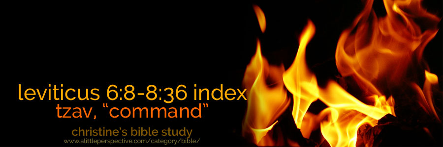 "Lev 6:8-8:36, tzav ""command"" index of studies 