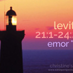 "leviticus 21:1-24:23, emor ""speak"" index"