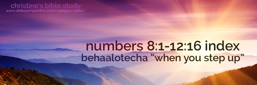 """numbers 8:1-12:16 behaalotecha """"when you step up"""" index 