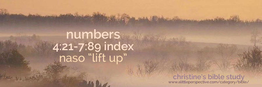 "numbers 4:21-7:89 naso ""lift up"" index 