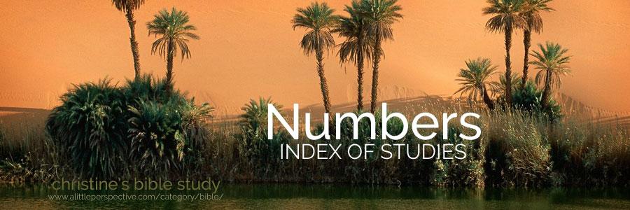 Numbers index of studies | christine's bible study