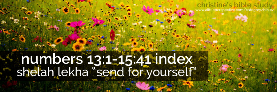 "numbers 13:1-15:41 shela lekha ""send for yourself"" index 