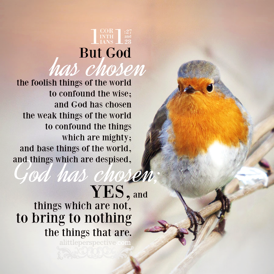 1 Cor 1:27   Scripture Pictures @ alittleperspective.com