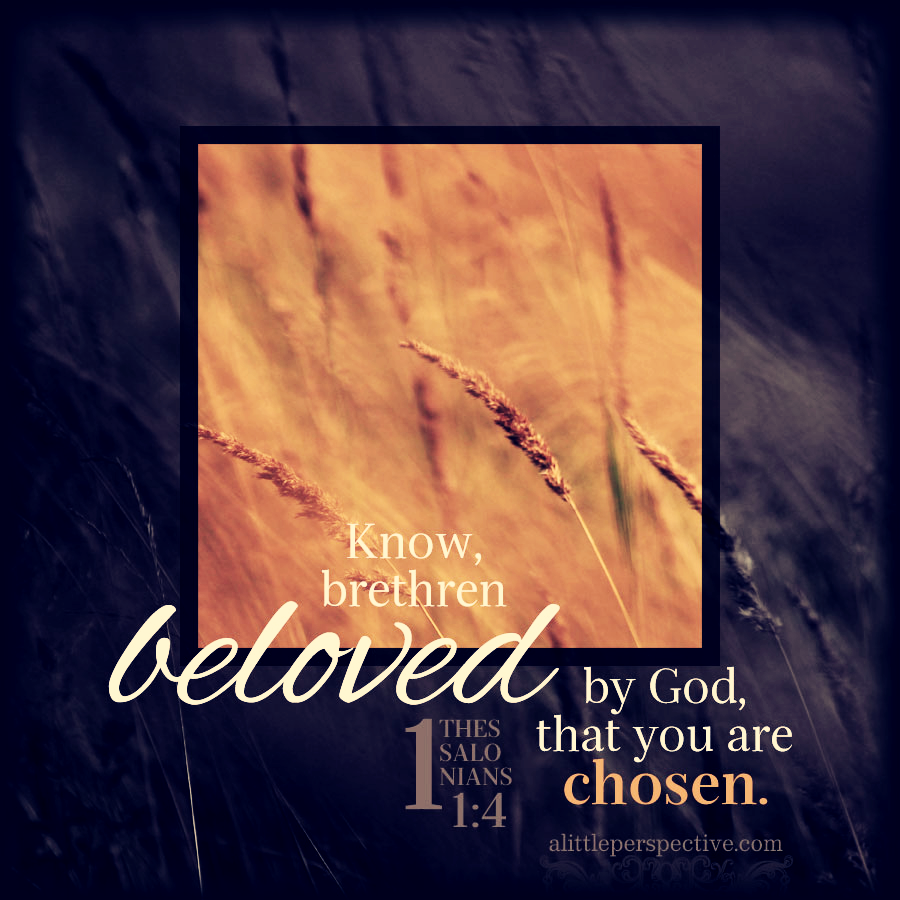 1 The 1:4   Scripture Pictures @ alittleperspective.com