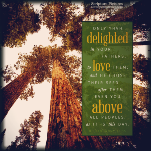 Deu 10:15   Scripture Pictures @ alittleperspective.com