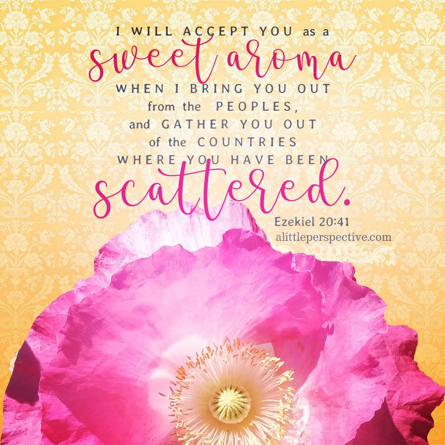 Eze 20:41 | Scripture Pictures @ alittleperspective.com