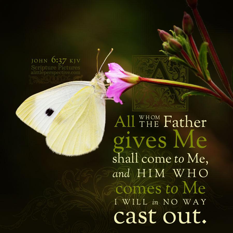 Joh 6:37   Scripture Pictures @ alittleperspective.com