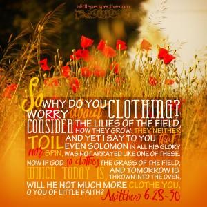 Mat 6:28-30