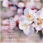Psa 94:14 | Scripture Pictures @ alittleperspective.com