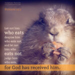 Rom 14:3   Scripture Pictures @ alittleperspective.com