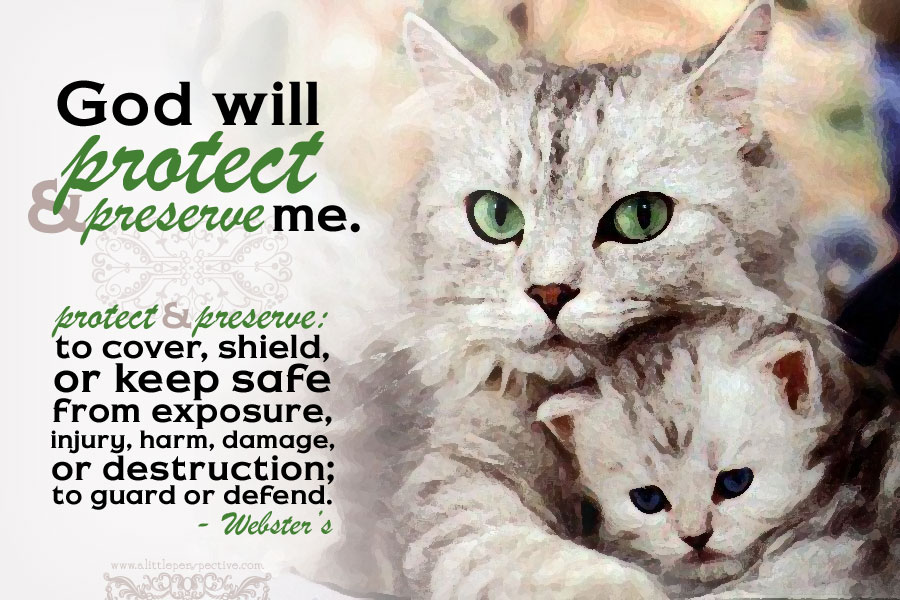 God will protect and preserve me.