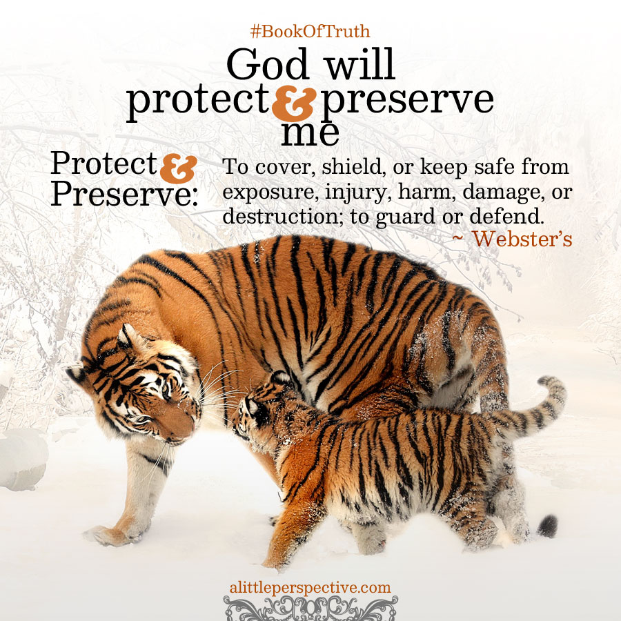 God will protect and preserve me | alittleperspective.com