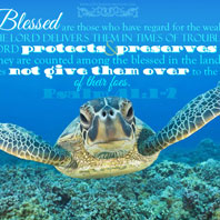 Blessed are those who have regard for the weak; the Lord delivers them in times of trouble. The Lord protects and preserves them - they are counted among the blessed in the land - He does not give them over to the desire of their foes.