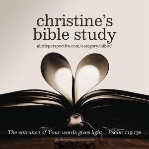 Christine's Bible Study | alittleperspective.com