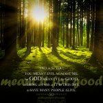 Gen 50:20 | scripture pictures at alittleperspective.com