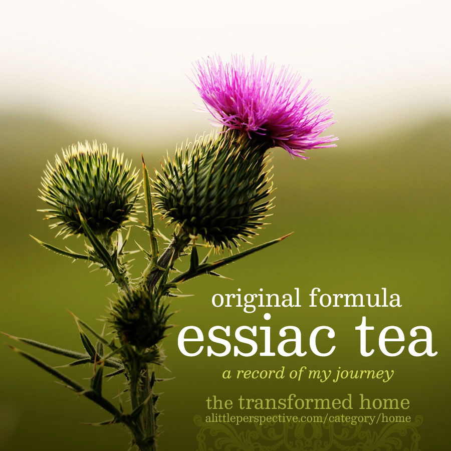 essiac tea | the transformed home @ alittleperspective.com