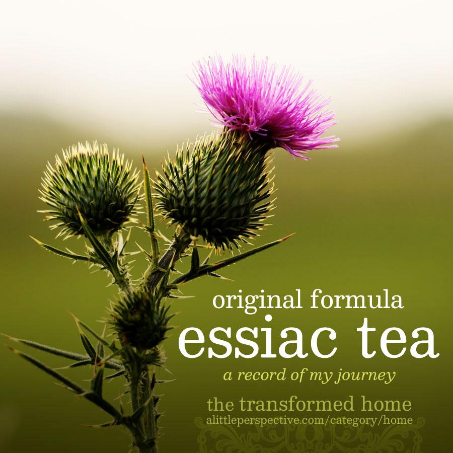 essiac tea | the transformed home @ alittleperspective.com