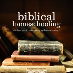 Biblical Homeschooling | alittleperspective.com