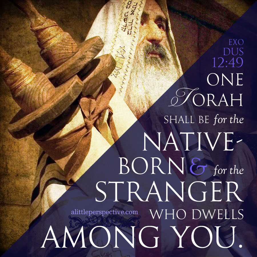 exodus 12:37-51, moses wrote about messiah