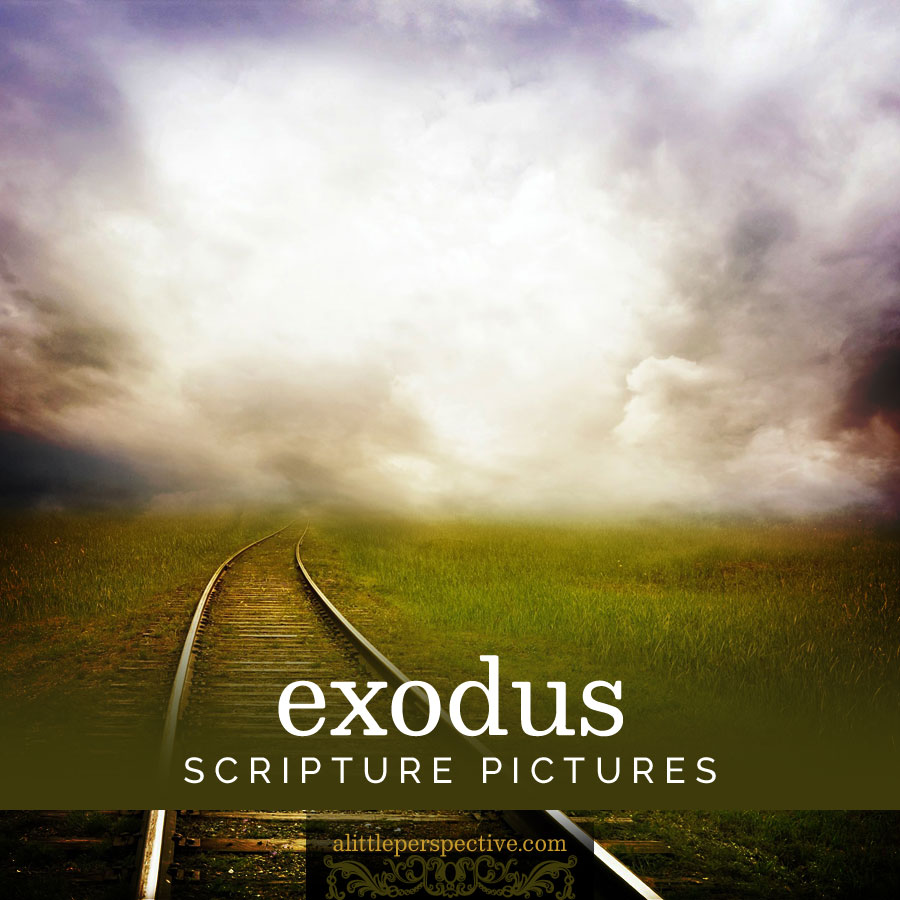 exodus scripture pictures | alittleperspective.com