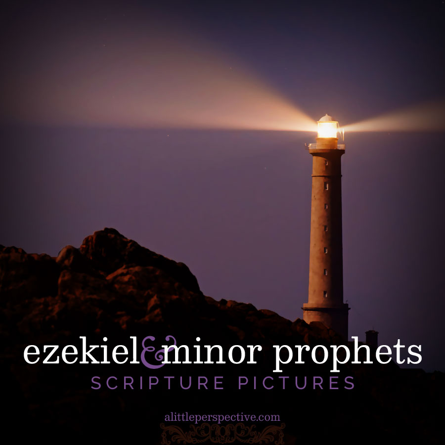 ezekiel and minor prophets gallery | scripture pictures at alittleperspective.com