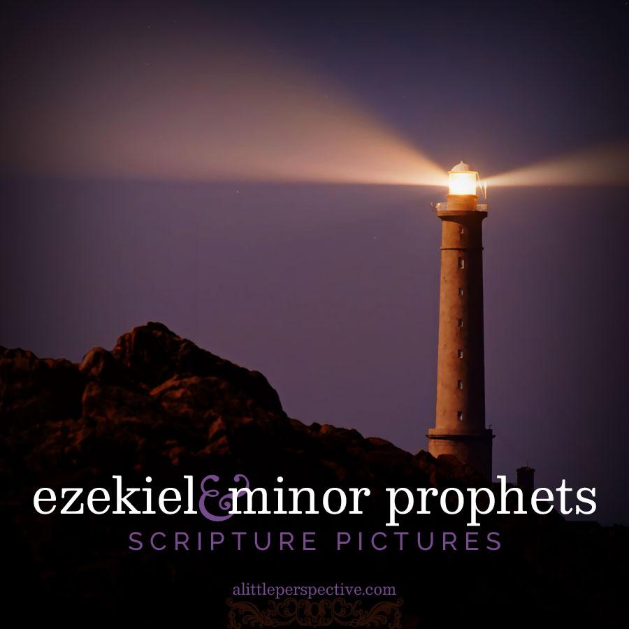 ezekiel and minor prophets gallery | scripture pictures at alittleperspective.com