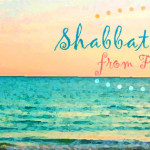 shabbat shalom from florida | a little perspective