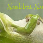 shabbat shalom y'all | a little perspective
