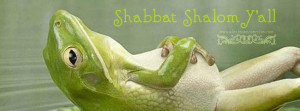 shabbat shalom y'all   a little perspective