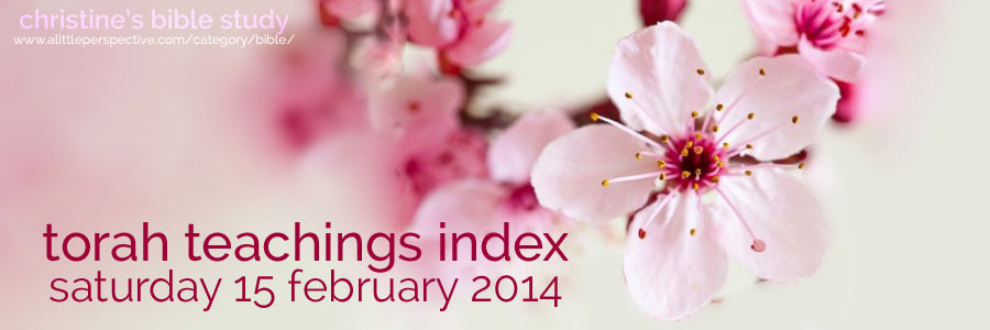 torah teachings index for sat 15 feb 2014