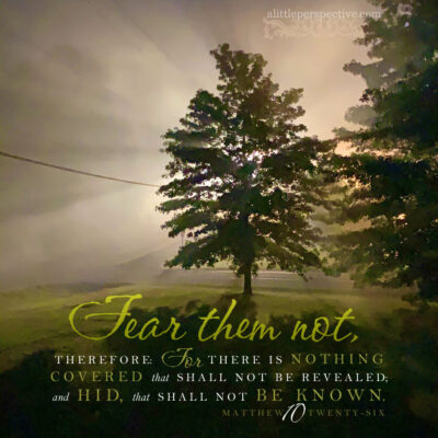 January 14 Bible Reading