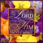 Psa 28:7 | Scripture Pictures @ alittleperspective.com